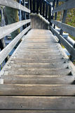 Wooden stairs. Down from lookout tower Royalty Free Stock Photo
