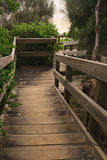 Wooden stairs in forest Stock Photography