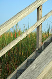Wooden Stairs in front of Cat Tails. Old, worn, sun-baked wooden stairs with railing with cattails and blue sky Royalty Free Stock Photos