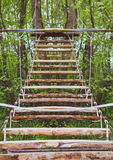 Wooden stairs in the green forest park Royalty Free Stock Image