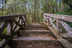 Wooden stairs have difficult obstacles to walk up. Wooden stairs have difficult obstacles to walk up, The front is a wilderness destination Royalty Free Stock Image