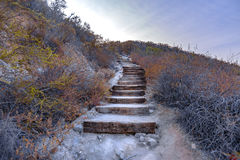 Wooden stairs on a hike in southern California Royalty Free Stock Image