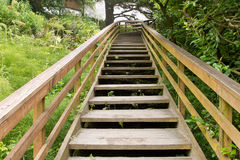 Wooden Stairs at Hiking Trail. To the Beach royalty free stock photos