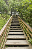 Wooden Stairs at Hiking Trail Vertical Royalty Free Stock Photo