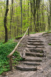 Wooden stairs on a hill Stock Photos