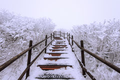 Wooden stairs on a hillside in winter. Deogyusan mountains in korea. Royalty Free Stock Images
