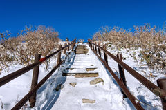 Wooden stairs on a hillside in winter. Deogyusan mountains in  Korea. Stock Photos