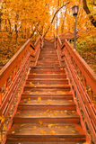 Wooden stairs with leaves in the autumn forest Royalty Free Stock Photography