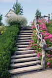 Wooden stairs and nature. Wooden stairs with flowers and grass from both sides Royalty Free Stock Image