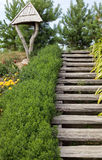 Wooden stairs and nature. Wooden stairs with flowers and grass from both sides Stock Photo