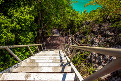 Wooden Stairs near green lagoon Stock Photography