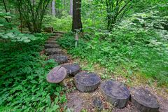 Free Wooden Stairs On Nature Hiking Trail In Forest, Finland. Stock Photos - 129178473