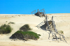 Wooden stairs over dunes Stock Photography