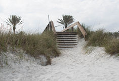 Wooden stairs over dunes at beach royalty free stock photos