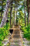 Wooden stairs. Wooden path and stairs near Baltic see, Olando kepure place Stock Photography