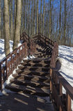 Wooden stairs on the slope of the ravine. Forest park in Moscow, Russia Royalty Free Stock Photography
