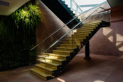 Wooden stairs with steel-and glass banister Stock Photography