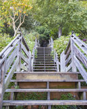 Wooden stairs with symmetry Stock Images