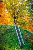 Wooden stairs to hill Royalty Free Stock Photos