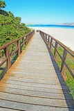 Wooden stairs to La Pelosa beach Stock Photography