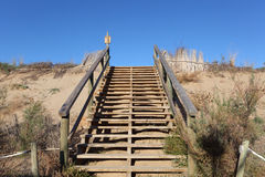 Wooden stairs to top of a dune Stock Photography