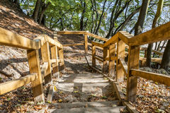 Wooden stairs on the tourist trail Stock Image