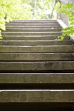 Wooden stairs. On a trail in the forest Royalty Free Stock Photo