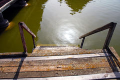Wooden stairs into water. Old shabby wooden staircase on green Palic lake, Serbia Stock Photography