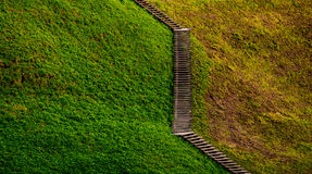 Wooden stairs Stock Photo
