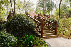 Wooden stairway before building in woods on sunny spring day Royalty Free Stock Image