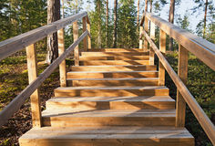 Wooden stairway goes up Royalty Free Stock Photo