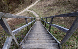 Wooden stairway leading down Royalty Free Stock Photo