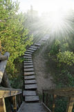Wooden stairway to heaven royalty free stock image
