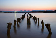 Wooden stakes that emerge out of the lake at colorful sunset in Royalty Free Stock Photography