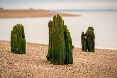 Wooden Stakes on a pebble beach Royalty Free Stock Photos
