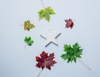 Wooden star and leaves Stock Images