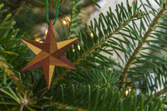 Wooden star. Six sided star, made from different pieces of wood, hanging on a holiday Christmas evergreen tree Royalty Free Stock Images