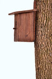 Wooden starling-house on a bole isolated stock images