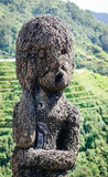 Wooden statue on the rice field Royalty Free Stock Photos