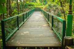 Wooden and steel bridge in between trekking trail in the tropica. L forest Royalty Free Stock Photography