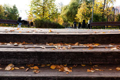Wooden steps. Autumn leaves at wooden steps Royalty Free Stock Photo