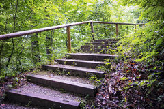Wooden steps Royalty Free Stock Photos