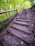 Wooden steps Stock Photography