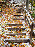 Wooden steps Royalty Free Stock Photography