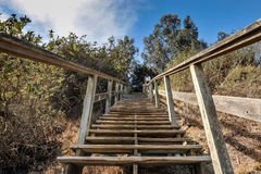Wooden steps lead up a steep cliff Stock Photo