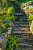 Wooden steps Stock Photos