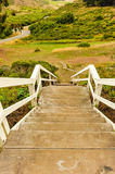 Wooden steps with railing lead to field Royalty Free Stock Photography