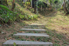 Wooden steps stair Royalty Free Stock Images