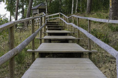 Wooden steps to the gazebo Royalty Free Stock Image