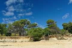 Steps to the beach, Little Kaiteriteri, New Zealand stock images